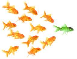 9 things born leaders possess