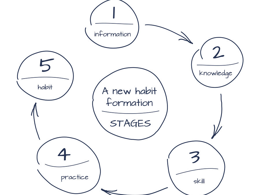 Why habits matter